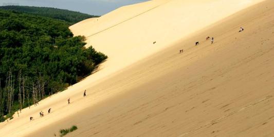 La Dune du Pilat - Vatel Bordeaux