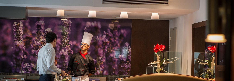 Hotels Vatel France #2
