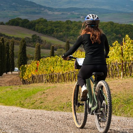 Le chemin du vignoble à vélo - Hotel Vatel Martigny