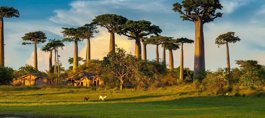 VATEL MADAGASCAR