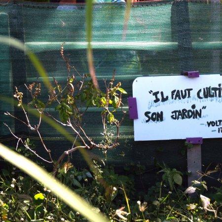 Vatel Réunion : Les étudiants se mettent au service des membres des jardins partagés du Chaudron, une soirée qui rassemble. - Vatel