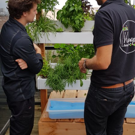 Vatel Bordeaux embraces urban farming