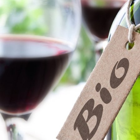 Organic wines, a booming market