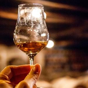 Vatel France Wine tour dans le Cognaçais
