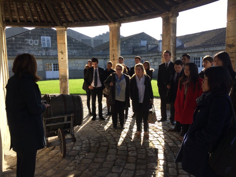 Vatel Bordeaux - Wine Tour & Workshops - 18