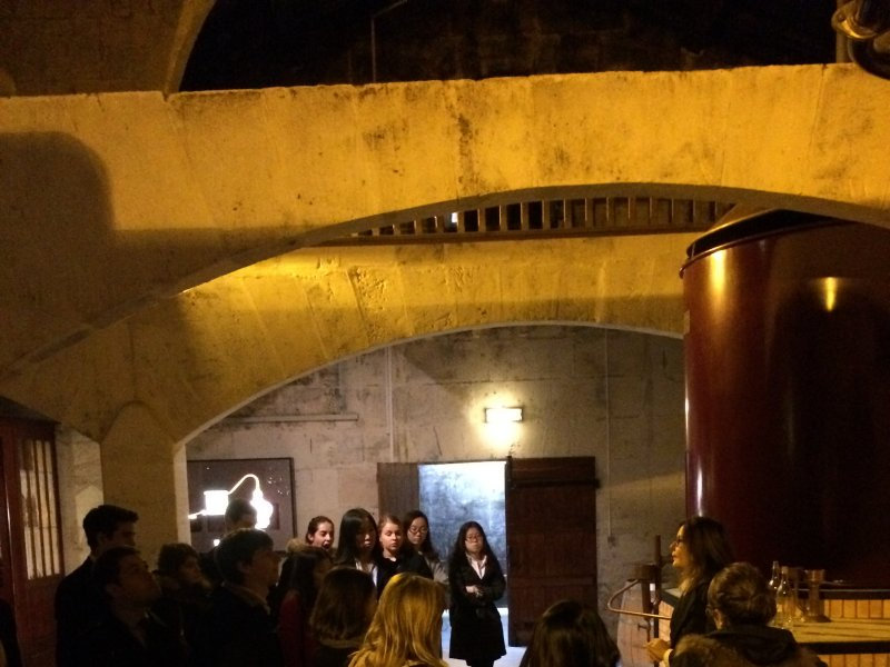 Vatel Bordeaux - Wine Tour & Workshops - 20
