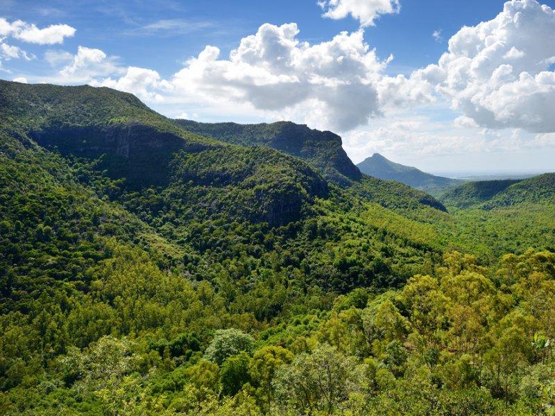 Vatel Mauritius - Mauritius - 4