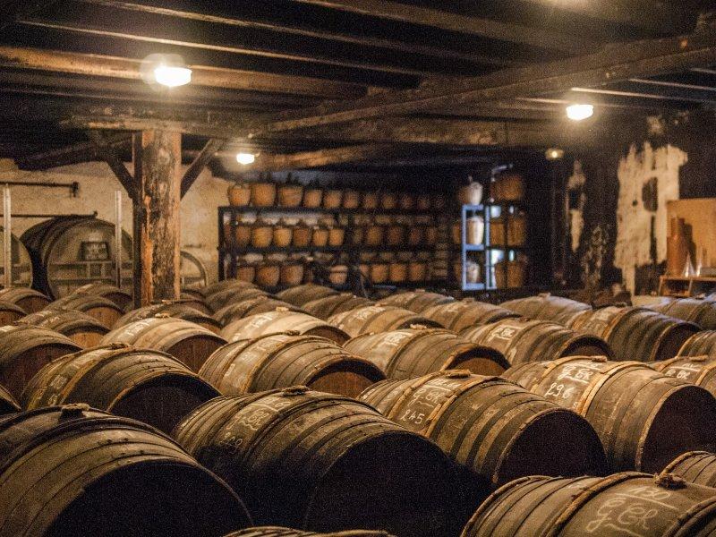 Vatel Bordeaux - Cognac Wine Tour_Maison Delamain & Tonnellerie Baron - 8