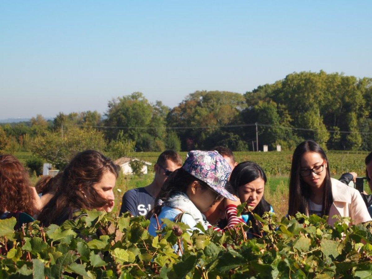 Vatel Bordeaux - Vie étudiante  - 1