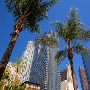 Presentation Vatel Los Angeles - Image 1